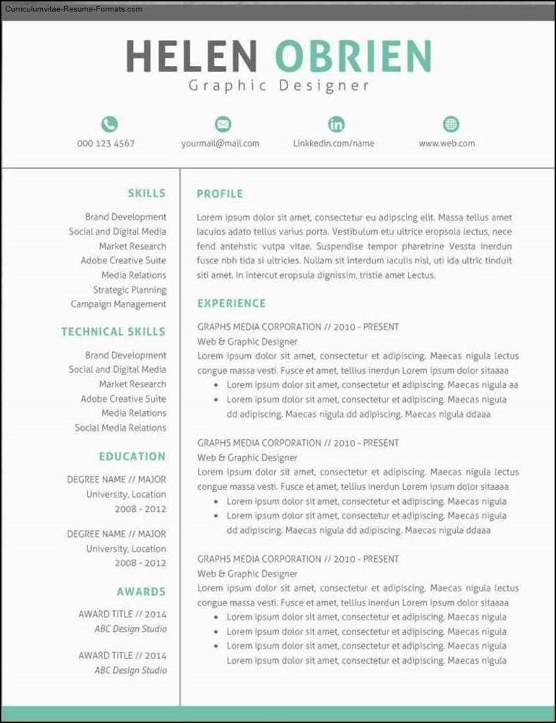 modern professional resume templates free samples examples format resume curruculum. Black Bedroom Furniture Sets. Home Design Ideas