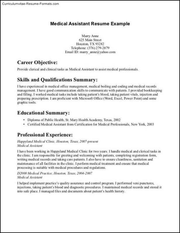 narrative resume template federal