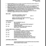 Occupational Therapy Resume Template