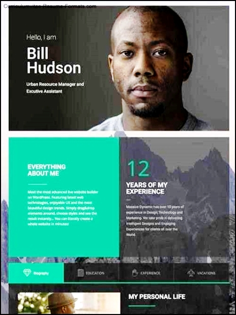 Personal Resume Website Template Free Samples Examples