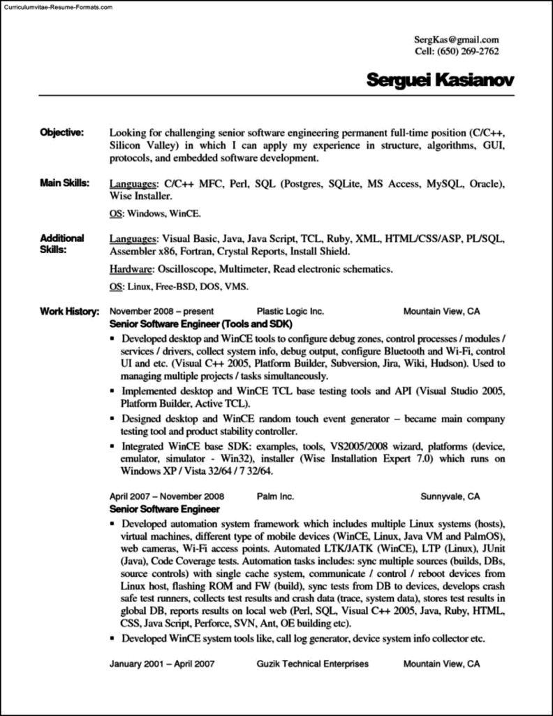 plain text resume template