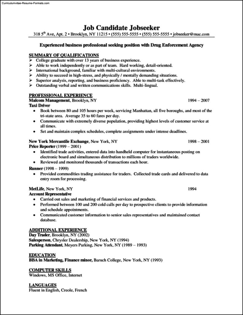 professional business resume template - Professional Business Resume Templates