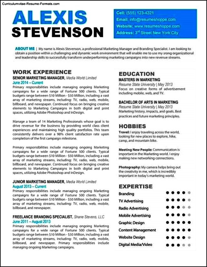 Professional Looking Resume Templates Free Samples
