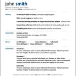 Professional Resume Layout Templates