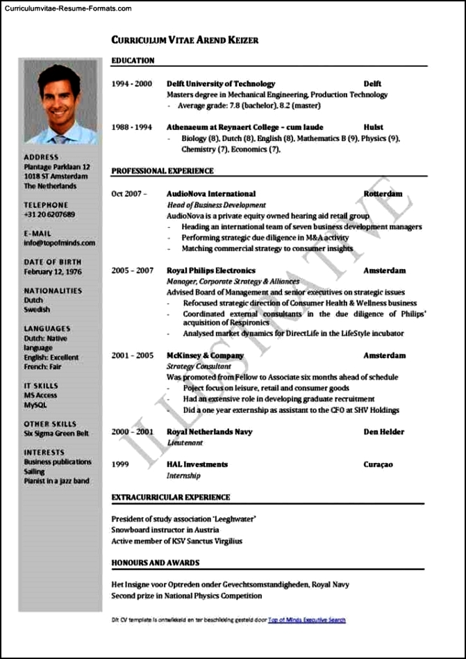 Professional Resume Templates Download
