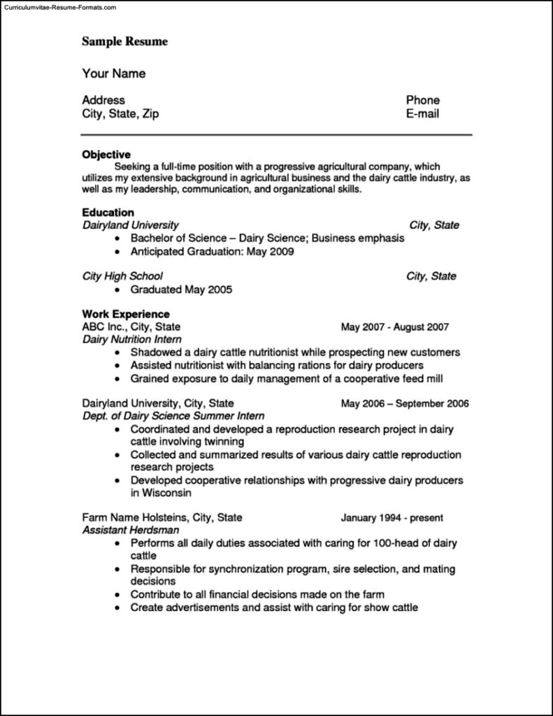 Reference Template Resume