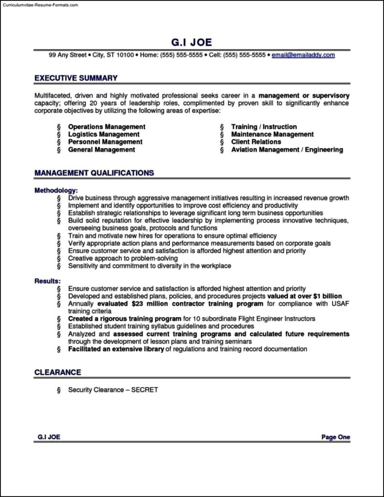 Resume Executive Summary Template