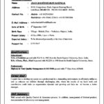 Resume Profile Template