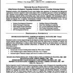 Resume Template Executive