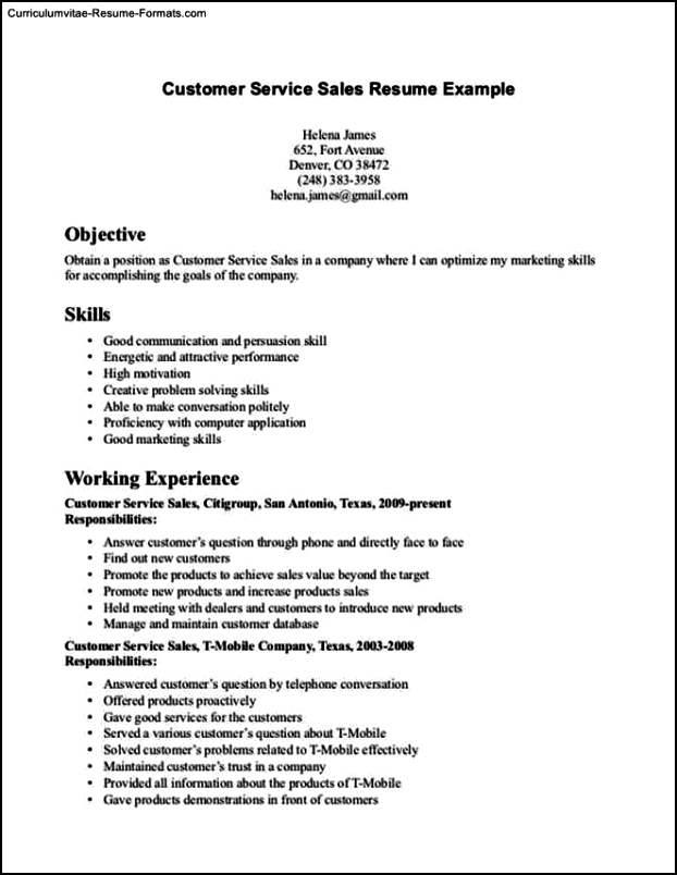 Resume Template For Customer Service