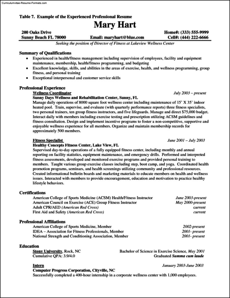 Resume Template For Experienced Professional