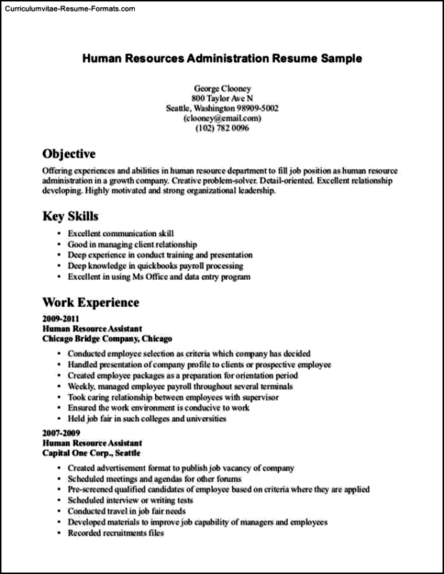 resume template no experience  free samples  examples