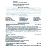 Resume Template Word 2010