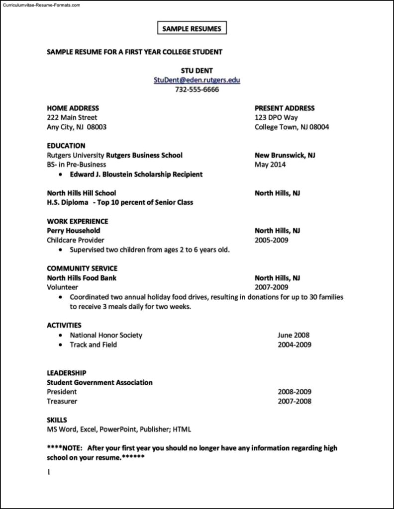 Resume Templates First Job