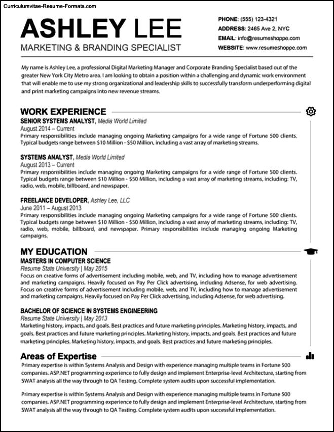 resume templates microsoft word mac free samples examples format resume curruculum vitae. Black Bedroom Furniture Sets. Home Design Ideas