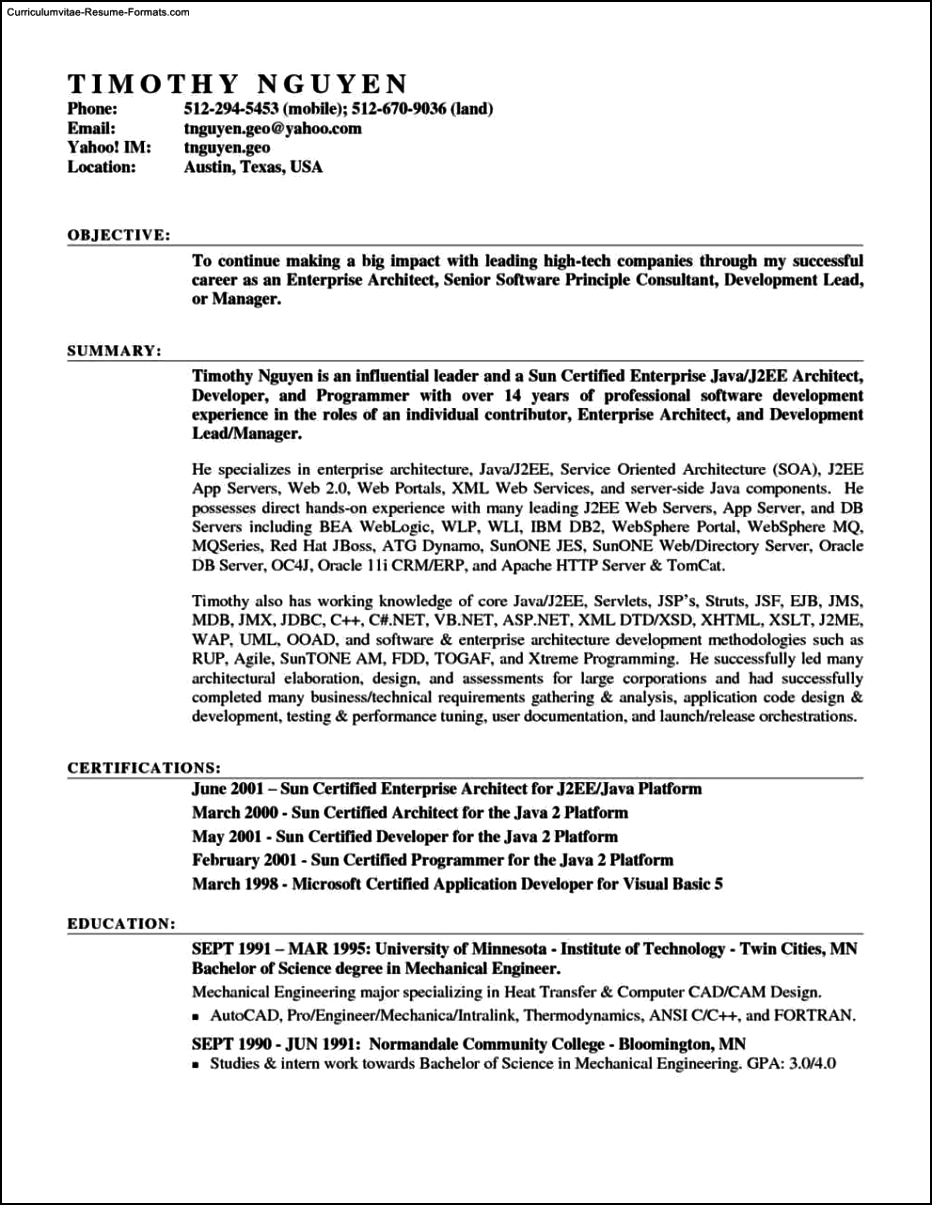 resume templates microsoft word 2007 resume templates on microsoft word 2007 free samples 24463