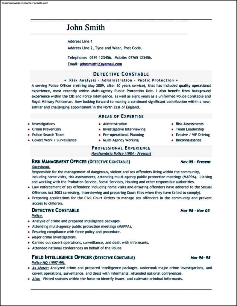 Resume Templates Word Document