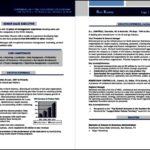 Sales Executive Resume Template