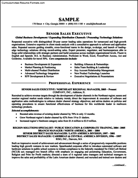 Sample Executive Resume Template