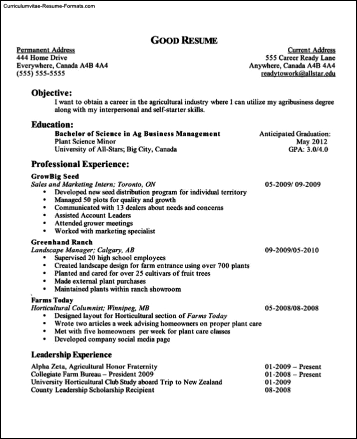 School Resume Template