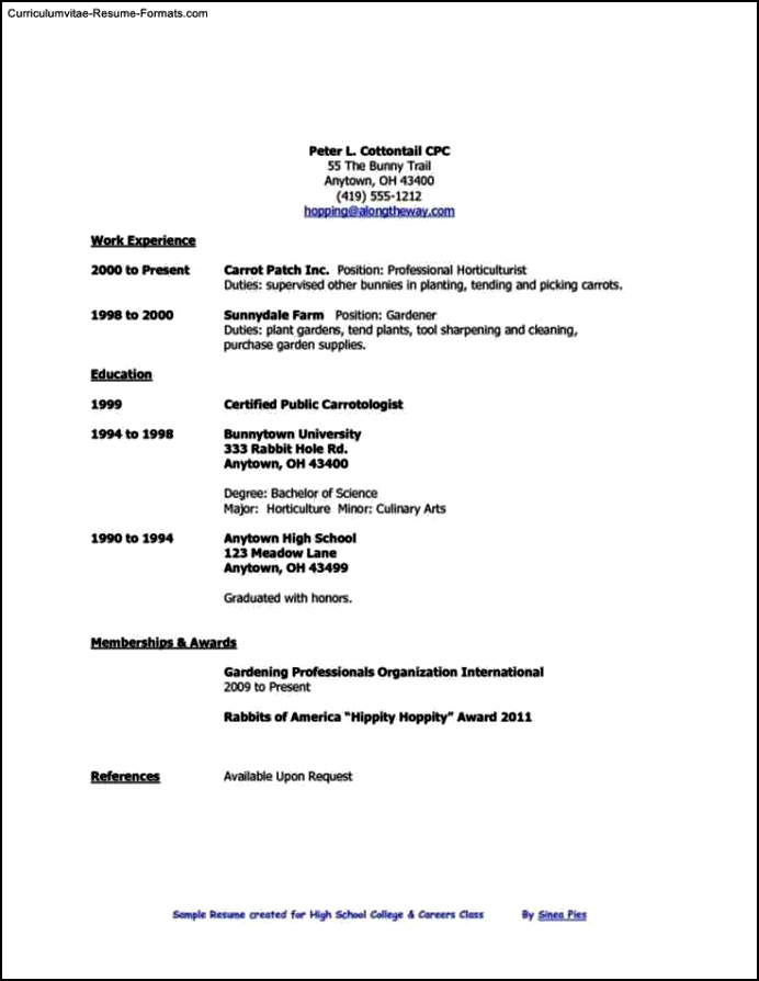 Simple resume template for high school students free for Easy resume template for high school students
