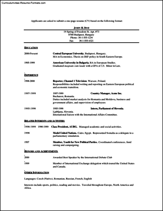 Single Page Resume Template   Free