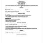 Skill Based Resume Templates