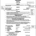Skills Based Resume Template Word