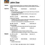 Successful Resume Template