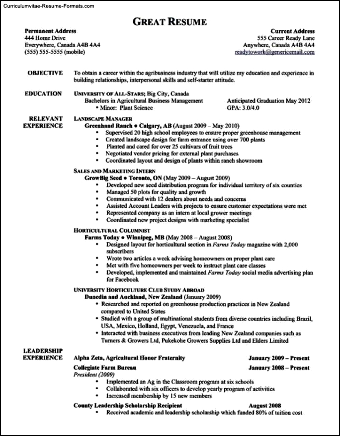 Template For A Good Resume