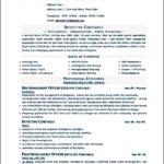 Word 2010 Resume Template