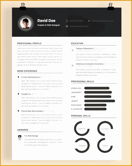 free resume template 19