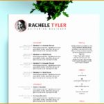 9 Adobe Indesign Resume Template