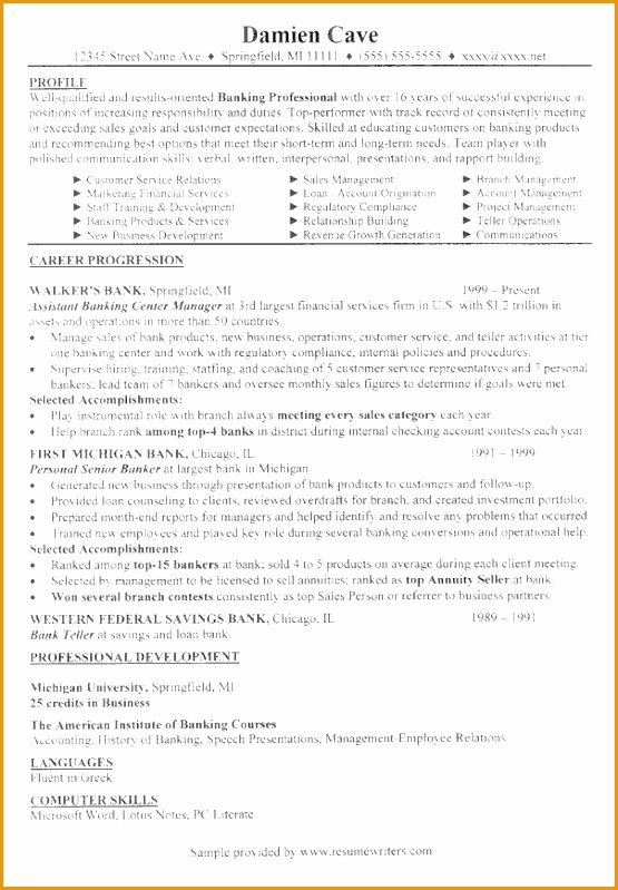 mortgage executive sample resume