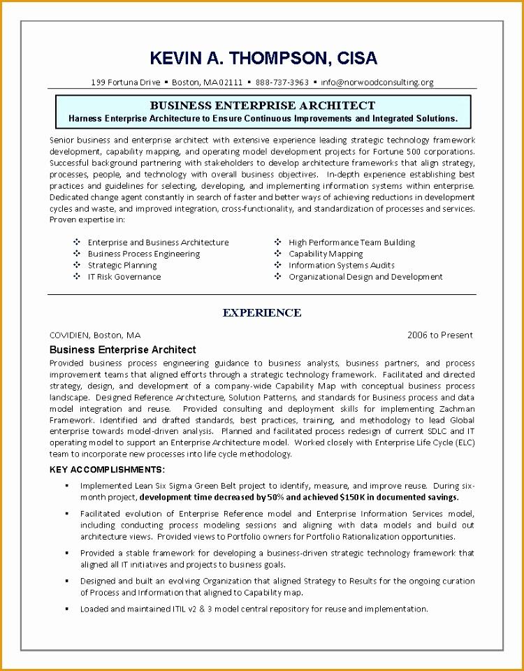 doc top 8 it enterprise architect resume samples