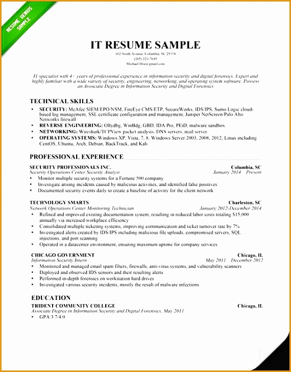 Information Technology IT Resume Sample 2015