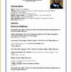 7 Computer Skills Resume format