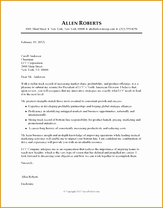ceo sample cover letter