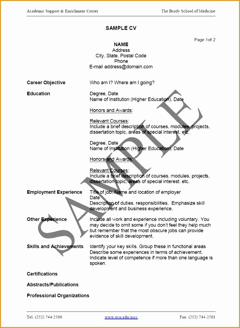 example curriculum vitae guide Format Curriculum Vitae Resume1087795