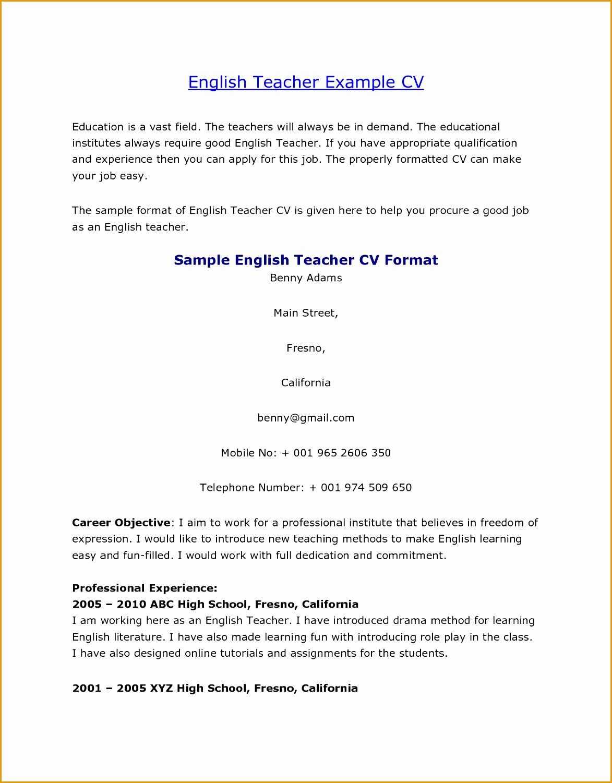 89 Fascinating Examples Curriculum Vitae Resume Template15011173
