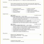 7 Curriculum Vitae for Teacher format