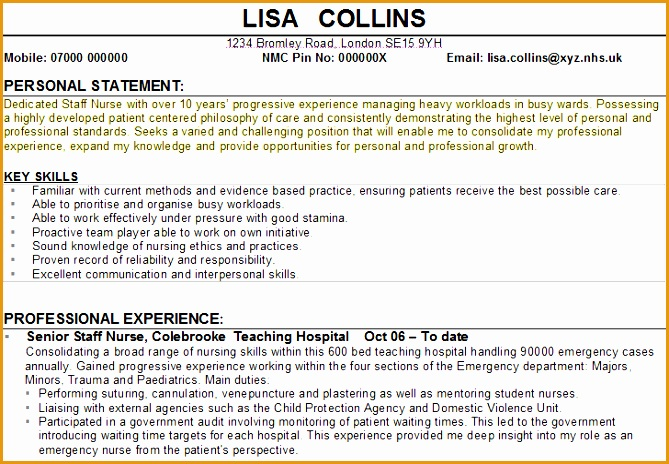 personal statement cv example1