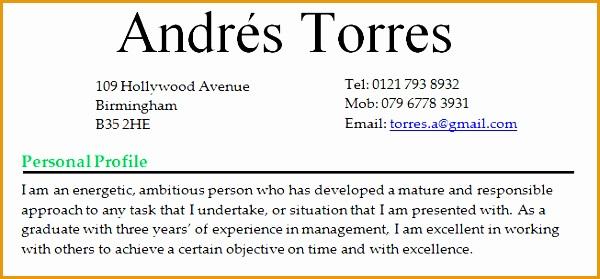 cv personal profile statement
