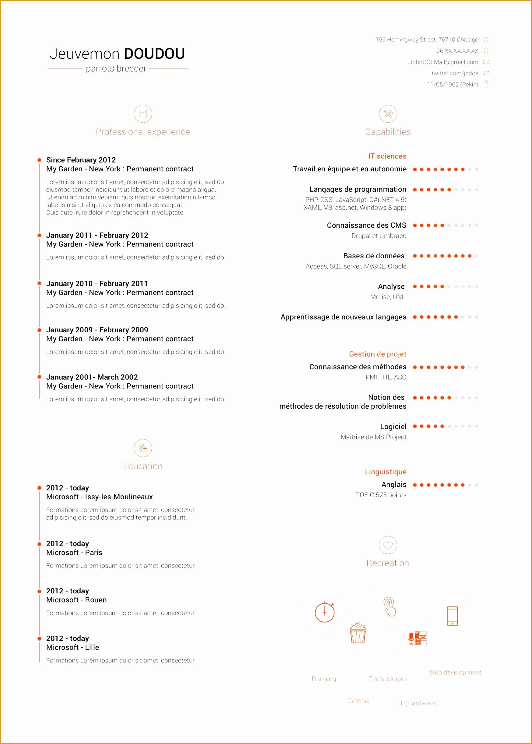 Professional Curriculum Vitae Template24451747