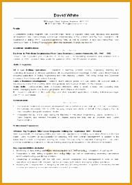 cv template examples webdesign14269193