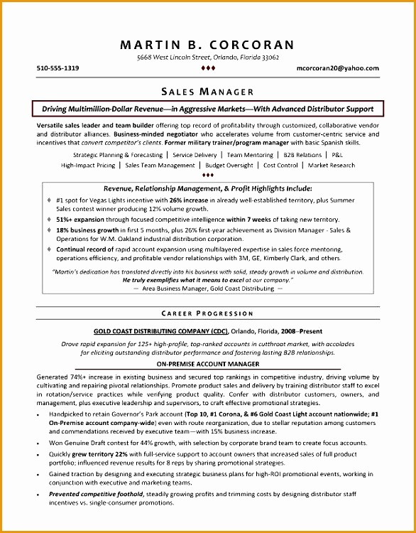Director Resume Examples Sample It Director Resume It Director750586