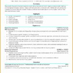6 Executive assistant Resume Sample