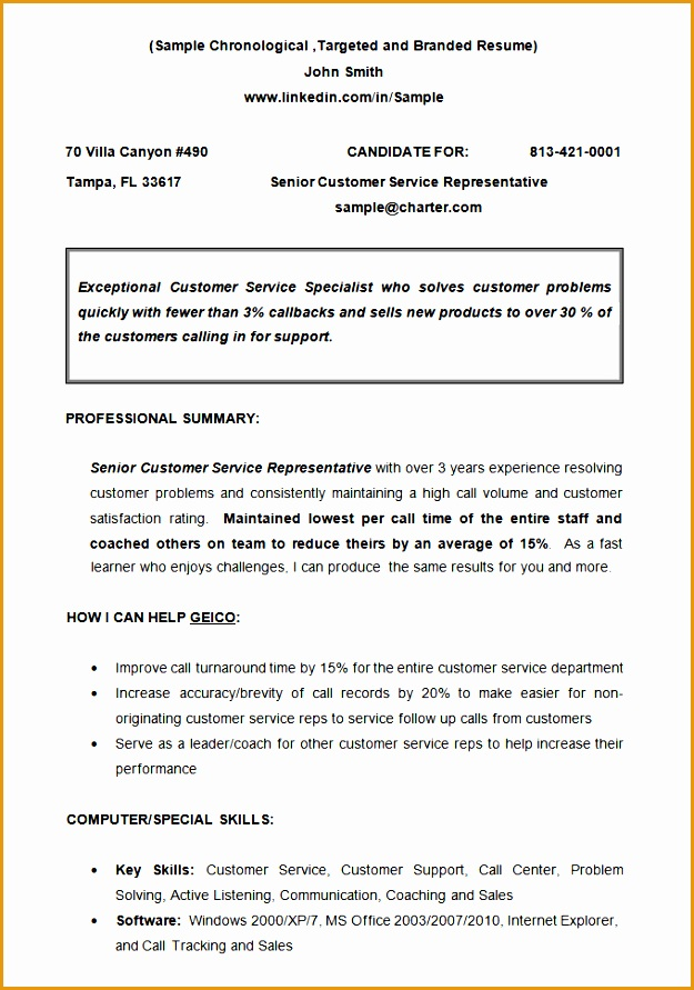 chronological resume template 23 free