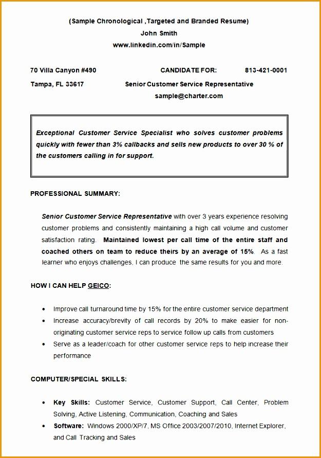 CV Sample Chronological Resume Template