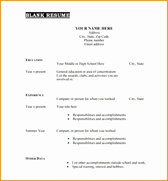 Printable Blank Resume Template Free PDF Format Download